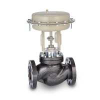General Service Globe Control Valves (PN16 to PN40 Rating, ANSI Class 150 to Class 300)