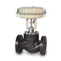 General Service Globe Control Valves (PN63 to PN100 Rating, ANSI Class 600)